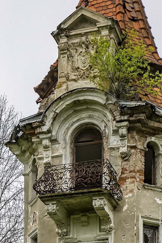 Abandoned villa in Nyzhankovychi, Lviv region, Ukraine, photo 3