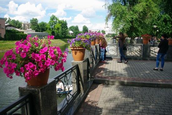 Summer in the center of Kharkiv, Ukraine, photo 17