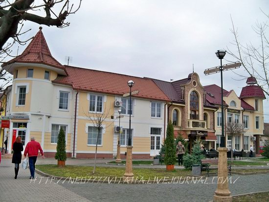 Vynohradiv town, Zakarpattia region, Ukraine, photo 14