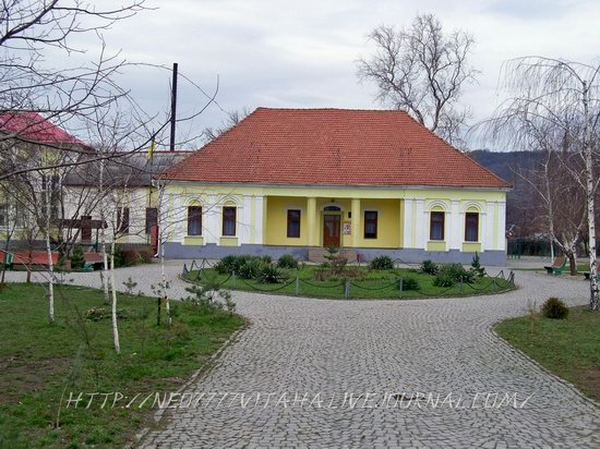 Vynohradiv town, Zakarpattia region, Ukraine, photo 8