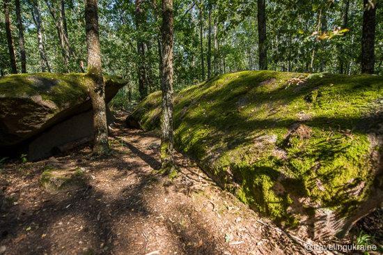 Kaminne Selo Geological Reserve, Zhytomyr region, Ukraine, photo 8