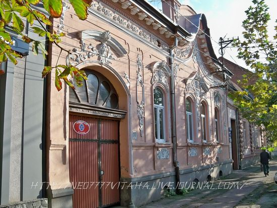Berehove - the center of Hungarian culture in the Zakarpattia region, Ukraine, photo 13