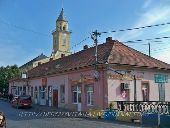 Berehove - the center of Hungarian culture in the Zakarpattia region, Ukraine, photo 2