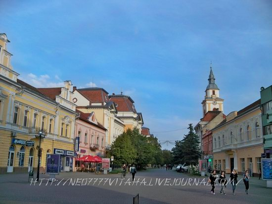 Berehove - the center of Hungarian culture in the Zakarpattia region, Ukraine, photo 25