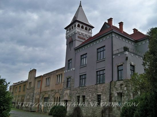 Berehove - the center of Hungarian culture in the Zakarpattia region, Ukraine, photo 28