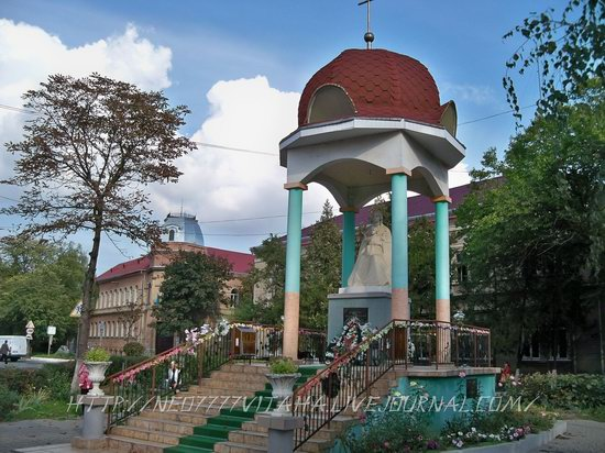 Berehove - the center of Hungarian culture in the Zakarpattia region, Ukraine, photo 4