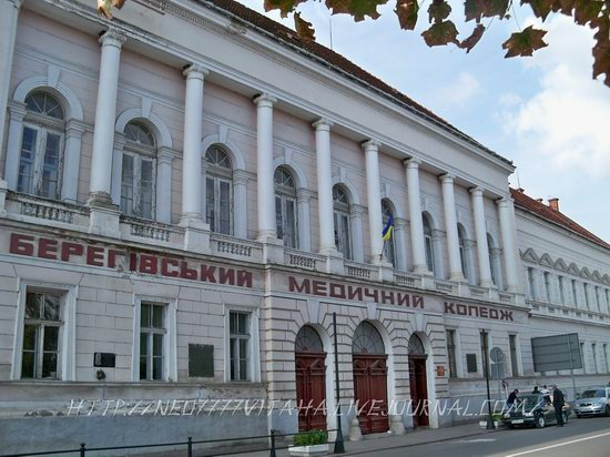 Berehove - the center of Hungarian culture in the Zakarpattia region, Ukraine, photo 7