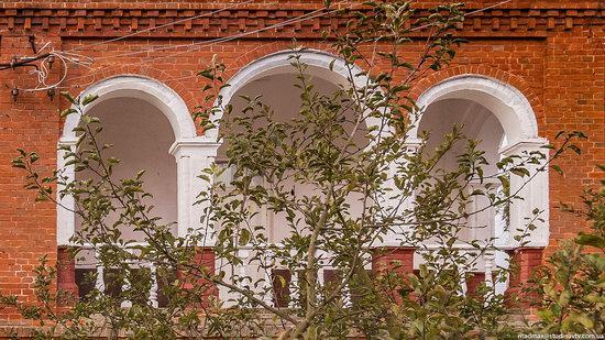 Palace of Kolonn-Chesnovsky in Bozhykivtsi, Ukraine, photo 10