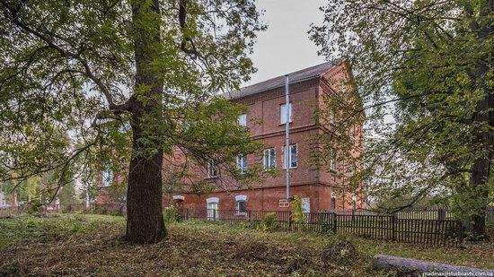 Palace of Kolonn-Chesnovsky in Bozhykivtsi, Ukraine, photo 5