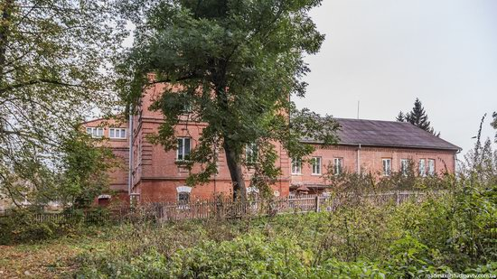 Palace of Kolonn-Chesnovsky in Bozhykivtsi, Ukraine, photo 6