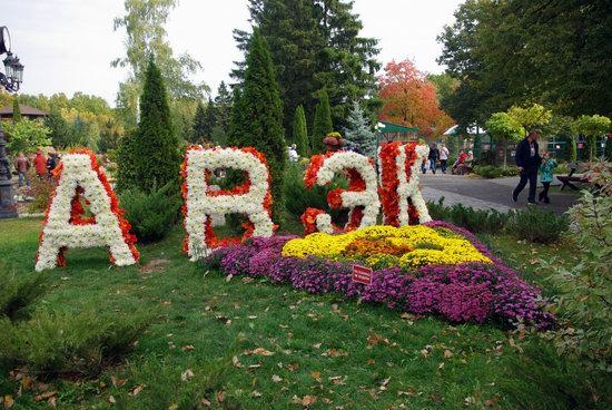 Ball of Chrysanthemums, Feldman Ecopark, Kharkiv, Ukraine, photo 13