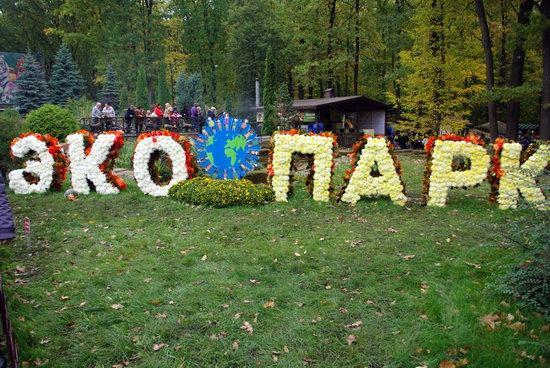 Ball of Chrysanthemums, Feldman Ecopark, Kharkiv, Ukraine, photo 2