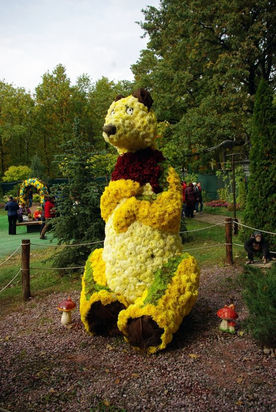 Ball of Chrysanthemums, Feldman Ecopark, Kharkiv, Ukraine, photo 7