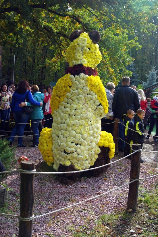 Ball of Chrysanthemums, Feldman Ecopark, Kharkiv, Ukraine, photo 8