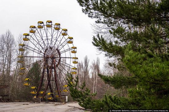 Pripyat, Ukraine - 32 years after evacuation, photo 23
