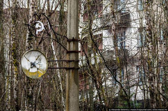 Pripyat, Ukraine - 32 years after evacuation, photo 31