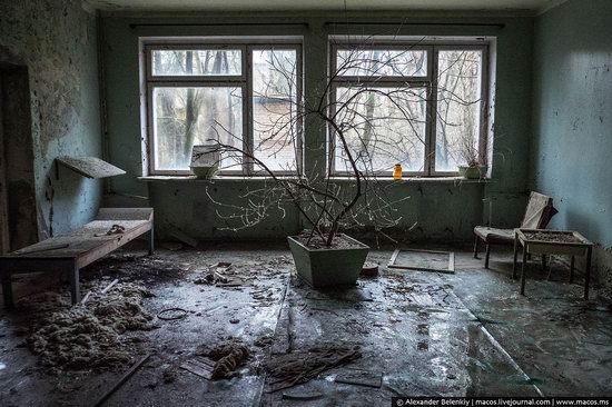 Pripyat, Ukraine - 32 years after evacuation, photo 38