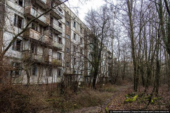 Pripyat, Ukraine - 32 years after evacuation, photo 7