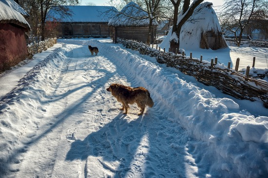 Snowy winter in the Pyrohiv Museum, Kyiv, Ukraine, photo 9