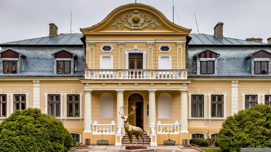 Palace of the Counts Tyszkiewicz in Brody, Ukraine, photo 2