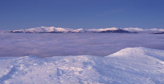 Winter on Mount Synyak, Ivano-Frankivsk Oblast, Ukraine, photo 7