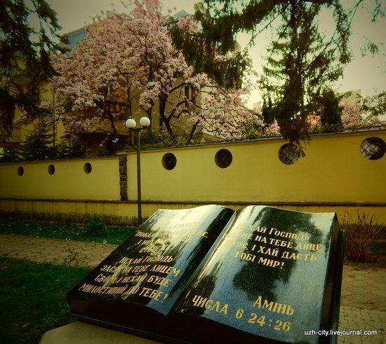Blooming Spring in Uzhhorod, Ukraine, photo 15