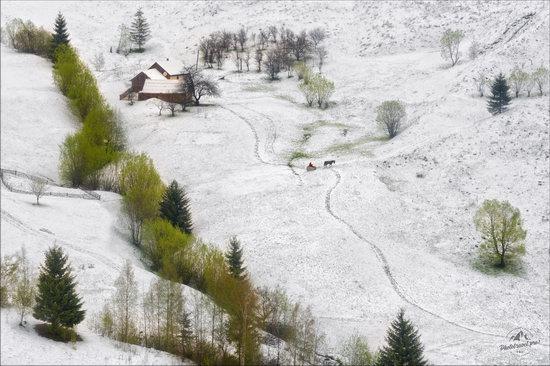 Unpredictable spring weather of the Carpathians, Ukraine, photo 1