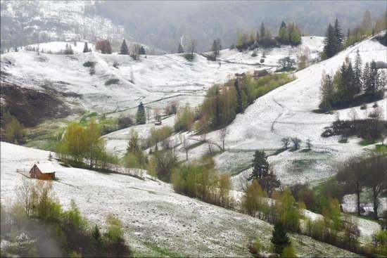 Unpredictable spring weather of the Carpathians, Ukraine, photo 3