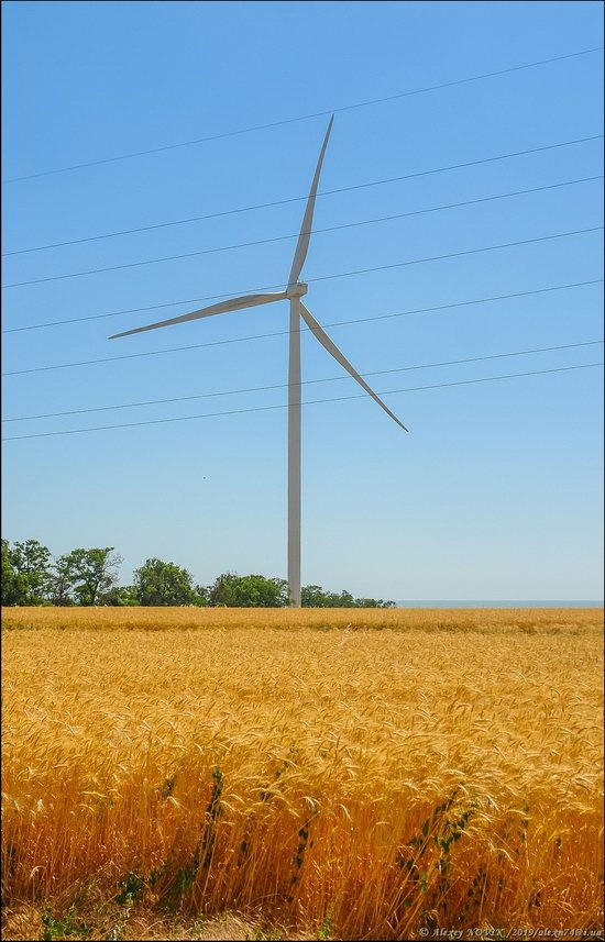 Wind Farm in Prymorsk in Southern Ukraine, photo 13