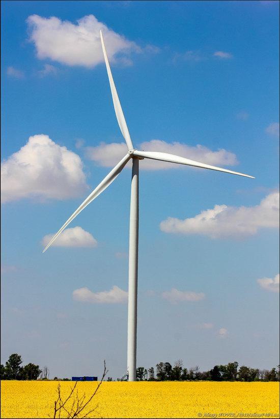 Wind Farm in Prymorsk in Southern Ukraine, photo 14