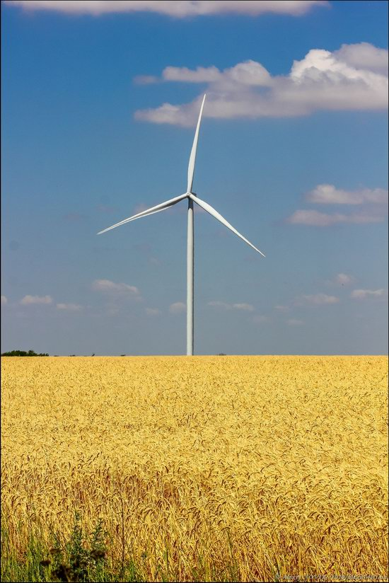 Wind Farm in Prymorsk in Southern Ukraine, photo 15