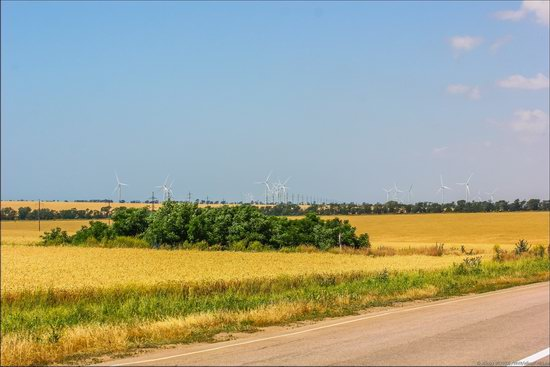 Wind Farm in Prymorsk in Southern Ukraine, photo 5