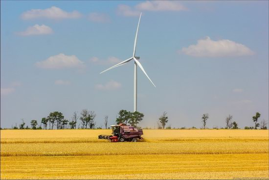 Wind Farm in Prymorsk in Southern Ukraine, photo 7
