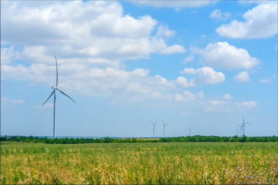Wind Farm in Prymorsk in Southern Ukraine, photo 9