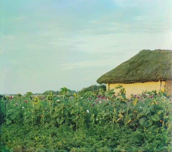 Color photographs of Ukraine in 1904-1905, photo 4