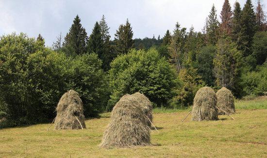 Summer in Slavske, Lviv Oblast, Ukraine, photo 12