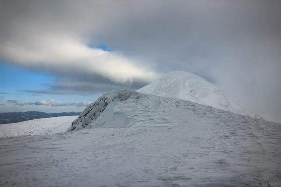 Climbing Hoverla - the highest mountain in Ukraine, photo 5