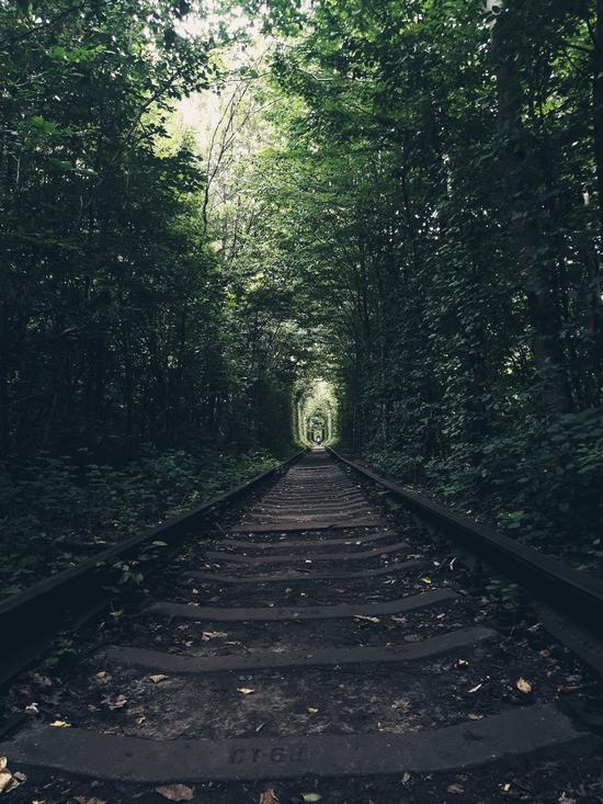 The Tunnel of Love in Klevan - Top Travel Attractions in Ukraine