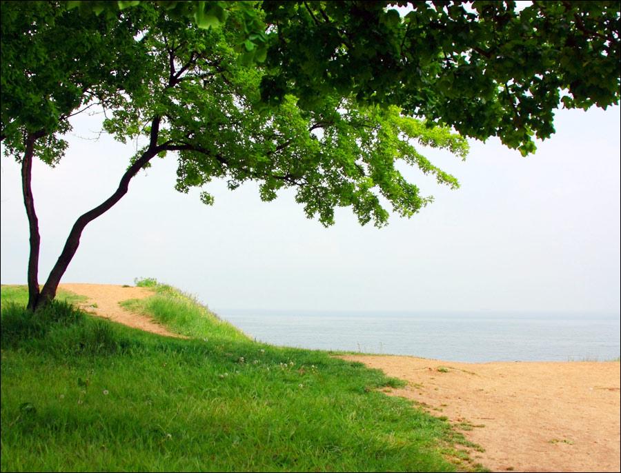 Odessa nude beach 7 - 2 6
