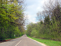 Paved road in Ternopil Oblast