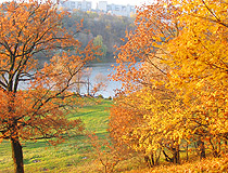 Golden autumn in the Vinnytsia region