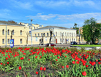Blossoming tulips in Zhytomyr