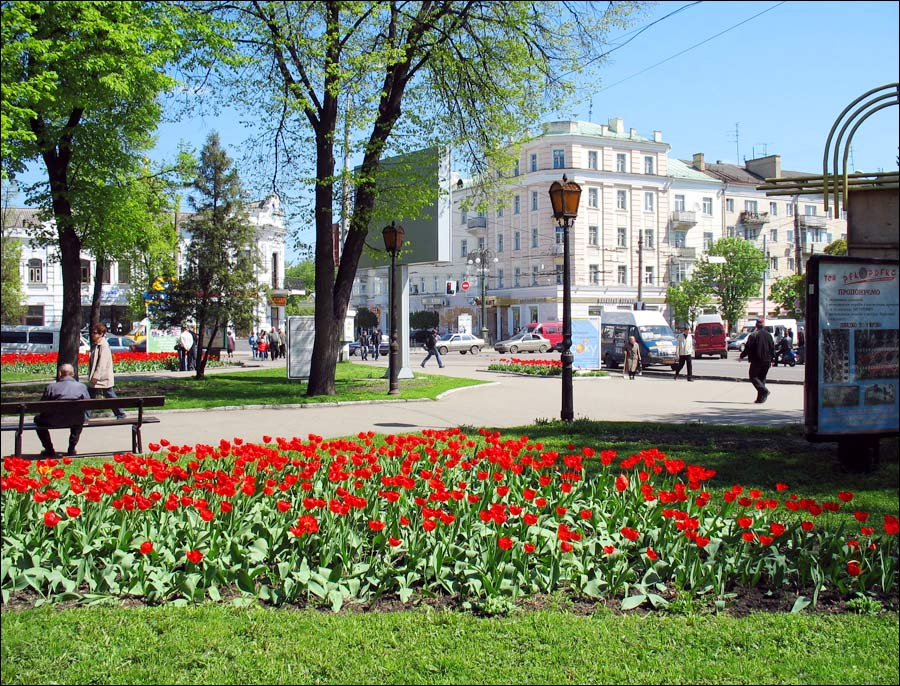 Summer In The Center Of Sumy